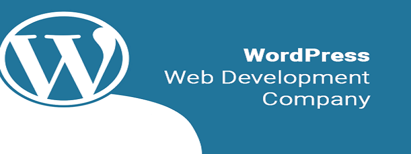 WordPress Development Company